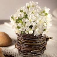 Máte o víkendu chuť si vyzdobit byt? Pár nápadů na jarní dekorace z kvetoucích rostlin máme…