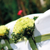 Svatba ve vaší zahradě