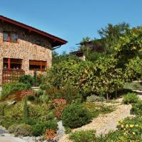 Netradiční zahrada s malou vinicí