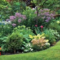 Letní výživa je důležitá, aneb která hnojiva na co použít