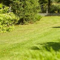 Pokud chcete mít v příštím roce na zahradě nový trávník, máte na jeho založení už jenom 14 dnů!