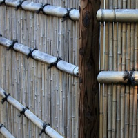Jak správně ošetřovat ploty z bambusu, popř. i jiné stavby z tohoto přírodního materiálu?