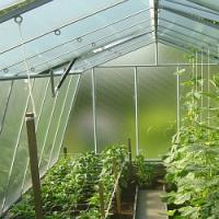 Chystáte se na koupi skleníku? Poradíme na co dát pozor, 2. část