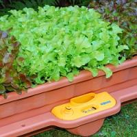 Nemáte velkou zahradu? Nevadí! Zkuste si vytvořit menší, třeba na parapetu za oknem!