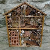 Chcete mít zahradu plnou užitečného hmyzu? Postavte mu hmyzí hotel!