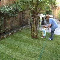 Chcete na zahradě nový trávník, ale nevíte jaký? S výběrem vhodného typu vám poradíme!