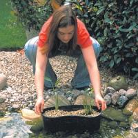 Plánujete si postavit na zahradě jezírko? Poradíme, jak ho vybudovat rychle a bez velkých nákladů!