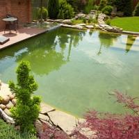 Je dešťová voda vhodná pro naše zahradní jezírko?