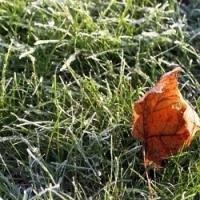 Zářijová soutěž o ceny pro podzimní ošetření trávníku