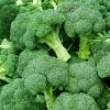 Máte rádi brokolici? Přinášíme dva zaručeně dobré recepty!