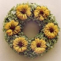Dekorace ze sušených rostlin, aneb čím si vyzdobit byt do příchodu jarních květů?