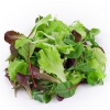 Naplánujte si letos více listové zeleniny! Je zdravá a pomáhá více, než si myslíte…