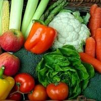 Co a kdy vysévat, vysazovat a sklízet, aneb vegetační kalendář nejdůležitějších druhů zeleniny.