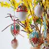 Přivítejte jaro a oslavte Velikonoce zvesela se zajímavými vajíčky!