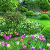 Květnová soutěž o zajímavé ceny do zahrady