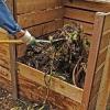 Léto je doba sklízení a také kompostování. Víte jak kompost správně založit?