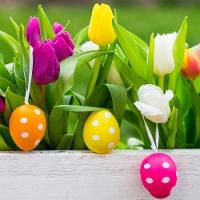 Rady, nápady a tipy pro netradiční velikonoční výzdobu…