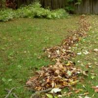Péče o trávník v současné nelehké době…