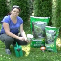 Video návod na podzimní výsadbu a údržbu okrasných dřevin
