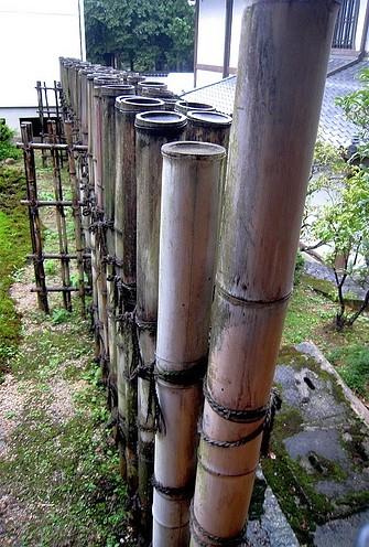 bambus_plot_6