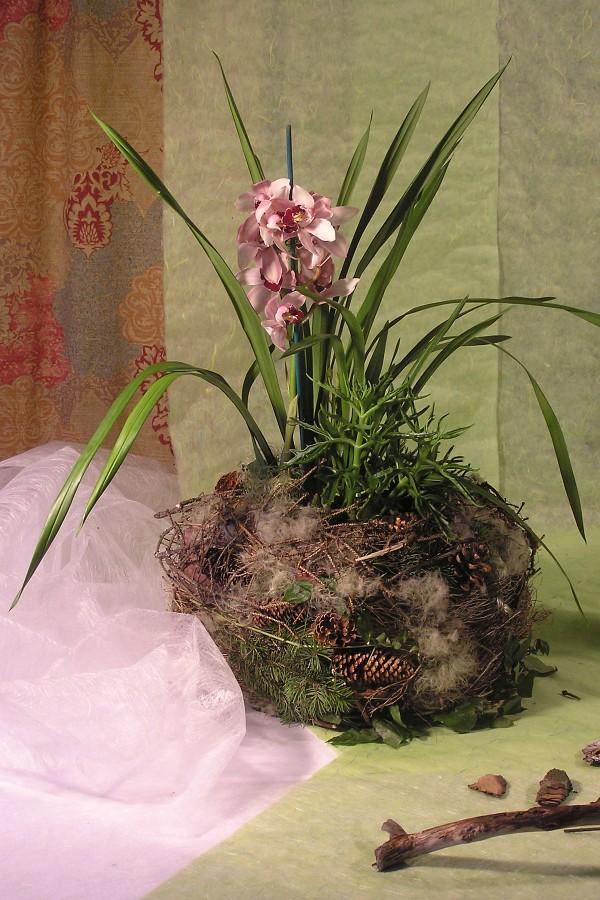 Květináč orchideje je obalen holými větvičkami, odkvetlým klematisem a chvojím