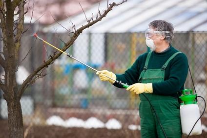 Jarní postřik proti přezimujícím škůdcům