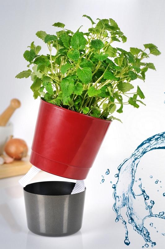 Samozavlažovací květináče se dají použít i na pěstování bylinek