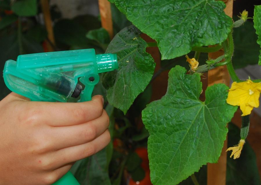 Ochrana rostlin postřikem