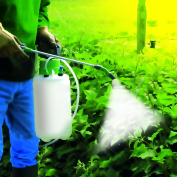 Prorůstající plevele lze likvidovat např. i v živém plotě
