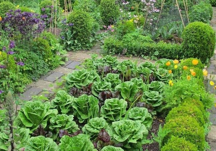 Základem zdravé zeleniny je nejen správná výživa a způsoby pěstování, ale také patřičná ochrana!