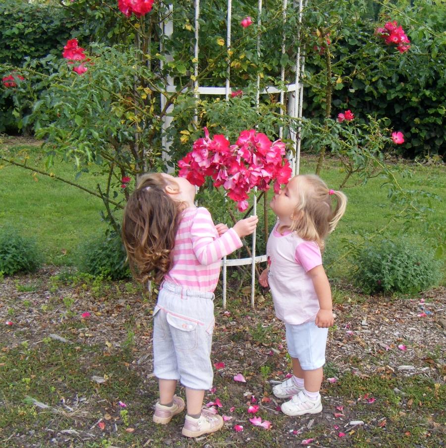 Děti a růže