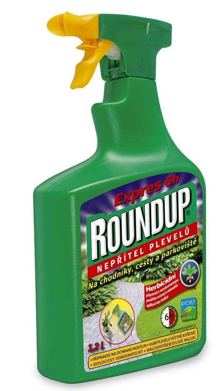 Roundup_Express_6h